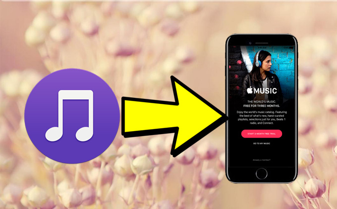 Transfer music to iPhone